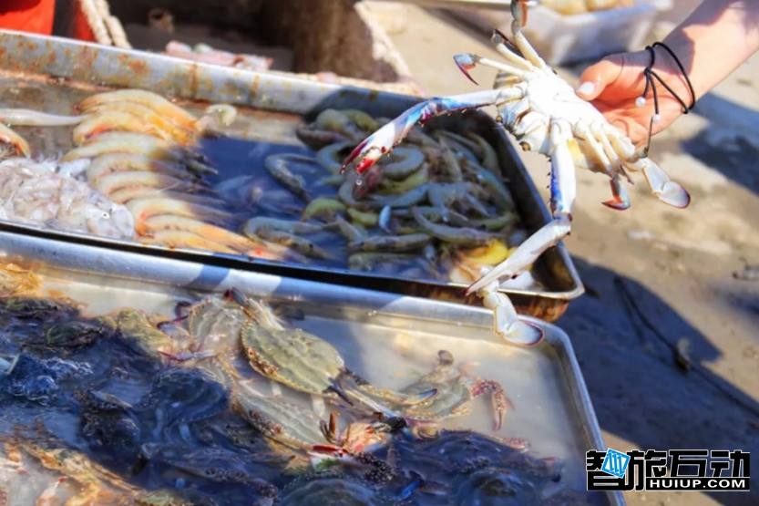 海鲜 螃蟹